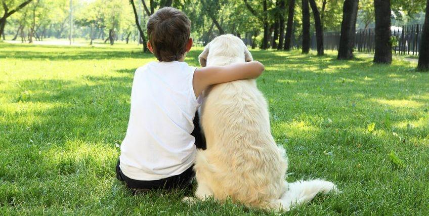 Boy with dog on grass