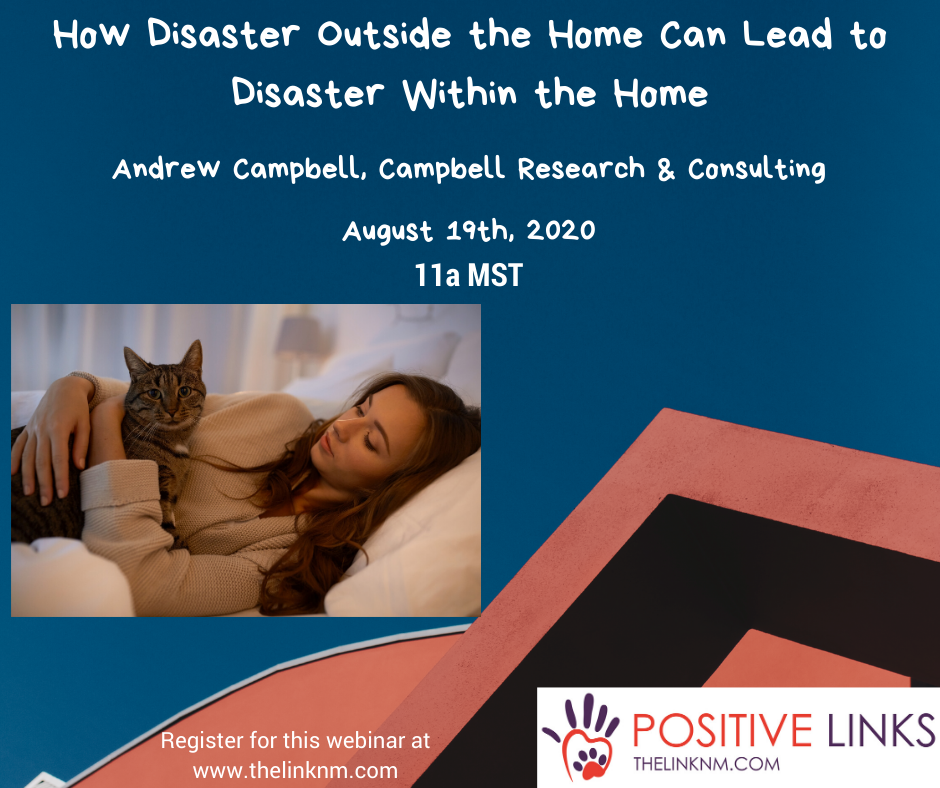 How Disaster Outside the Home can Lead to Disaster Within the Home Andrew Campbell, Campbell Research & Consulting August 19th, 2020 11am MDT Register for this webinar at www.thelinknm.com